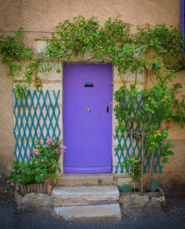 Lavender: Paris and Provence Gallery