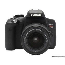 Small Crop Of Nikon D5500 Vs Canon T6i