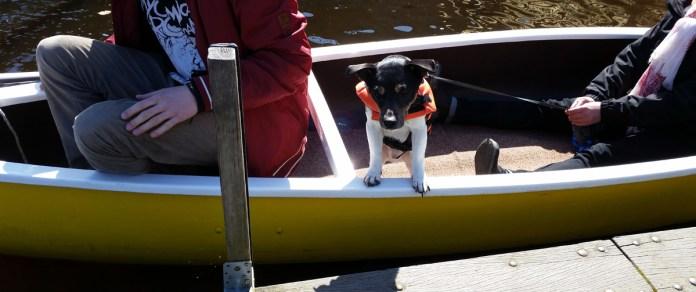 Anleger Hamburg Hunde erlaubt