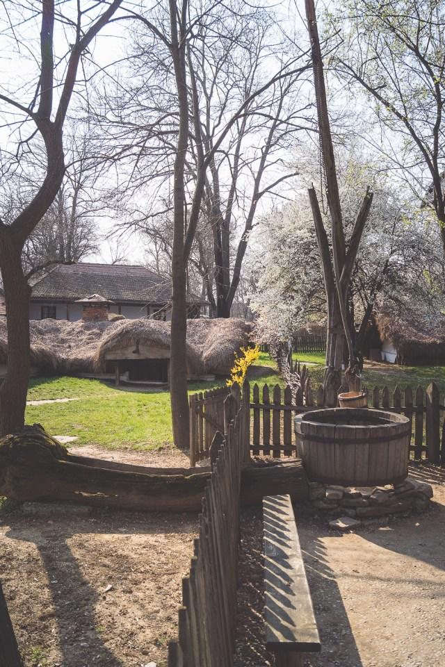 Galerie foto Primăvara la Muzeul Satului din București 12