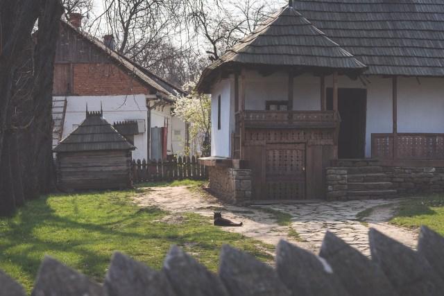 Galerie foto Primăvara la Muzeul Satului din București 18