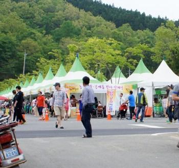 green tea festival