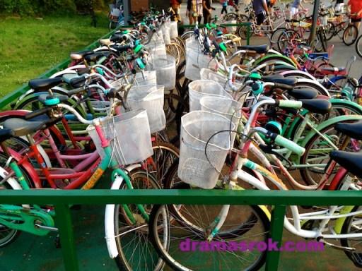 biking-in-seoul