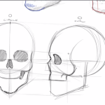 How To Draw Skulls
