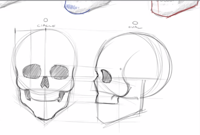 How to draw skulls draw central for Draw with jazza mural