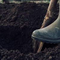 Digging Holes: Managing Other People's Expectations