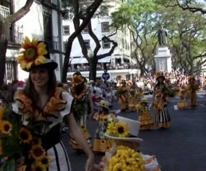 Flores do Sol 2007