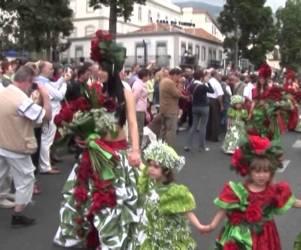 Rosas 2006