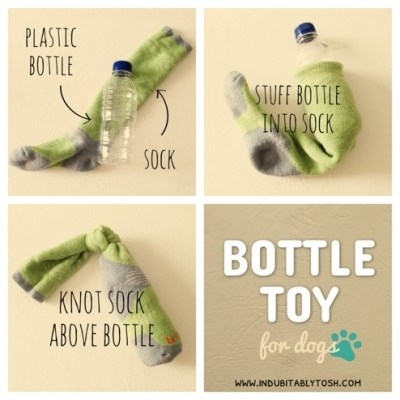 DIY Bottle Toy for Doggies