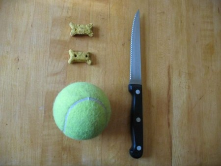 DIY Tennis Ball Treat Puzzle for Dogs