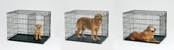 The same crate can be used from Puppy to Adulthood by using the divider
