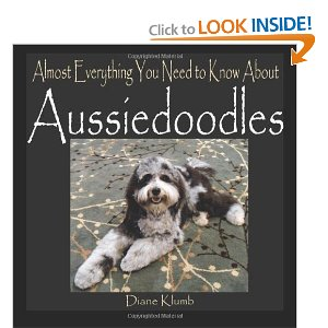Almost Everything You Need to Know About Aussiedoodles