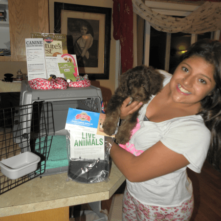 My daughter Tianna helping me get a puppy ready to be shipped