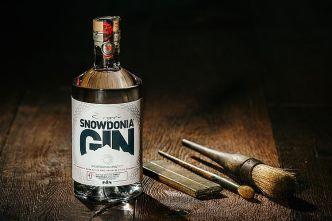 Gin-Test