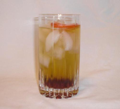 indiansummer New Recipe: The (Indian) Summer Tonic