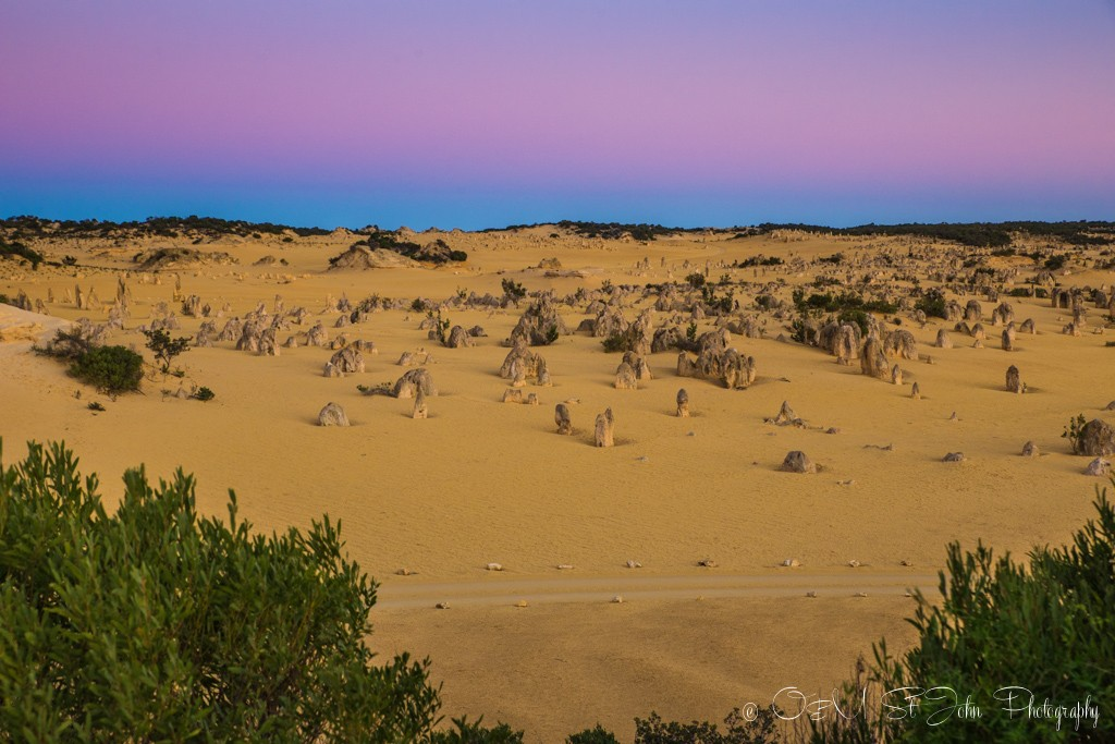 View of the Pinnacles Desert from the lookout. Western Australia