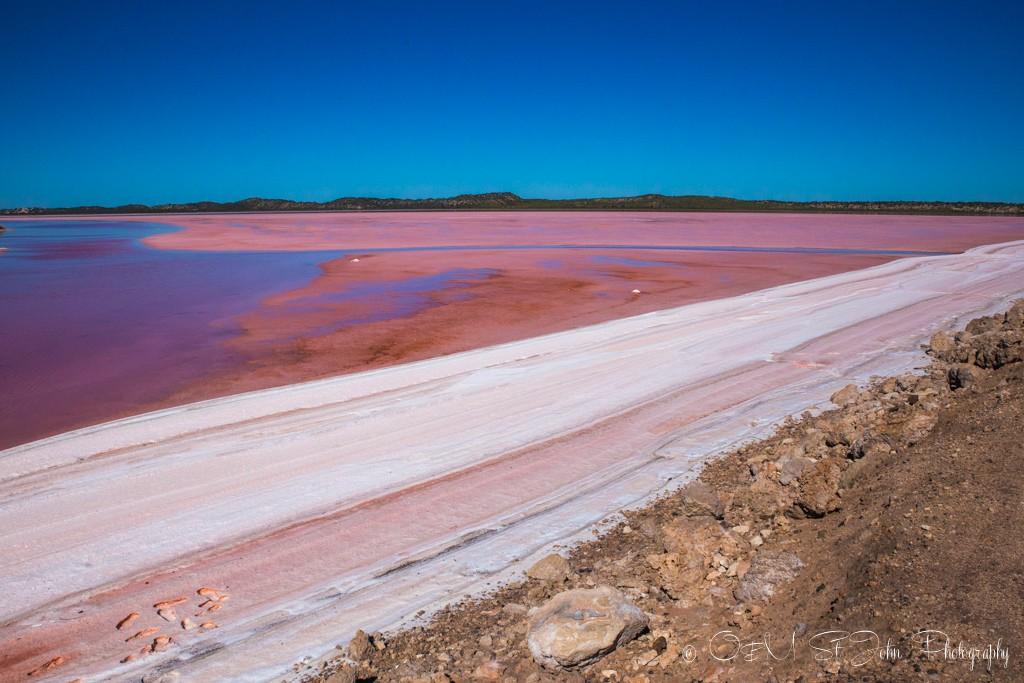 Hutt Lagoon meets the shore forming a layer of hard white foam on the surface. Pink Lake. Western Australia