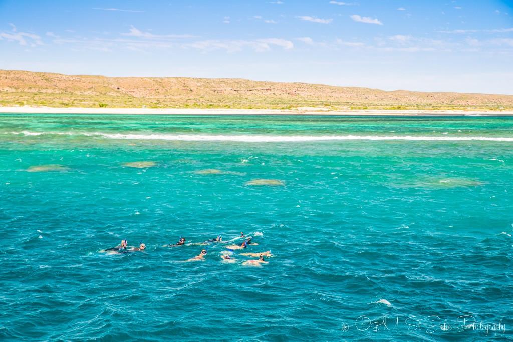 Last snorkel stop. Ningaloo Reef. Exmouth. Western Australia