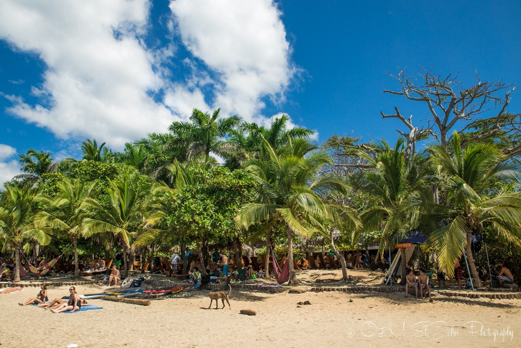 Playa Avellanas, Gaanacaste