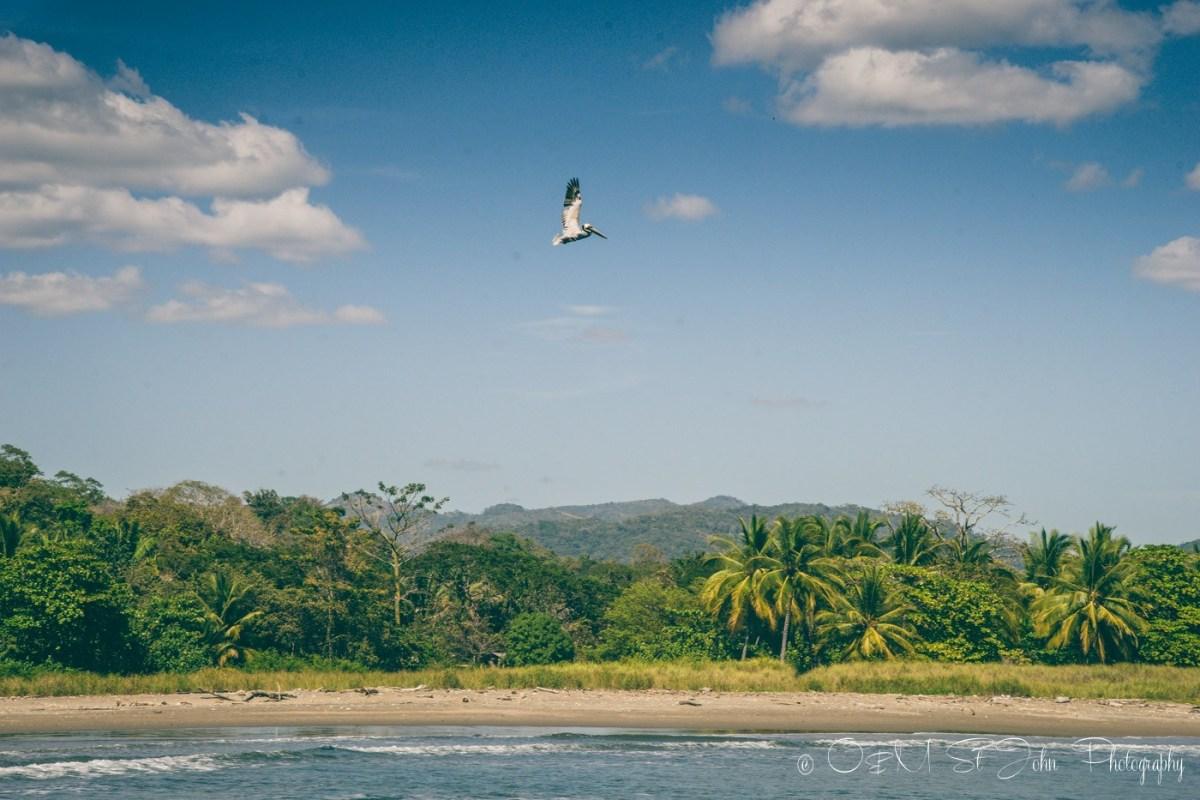 Secluded beach at Playa Buena Vista. Costa Rica