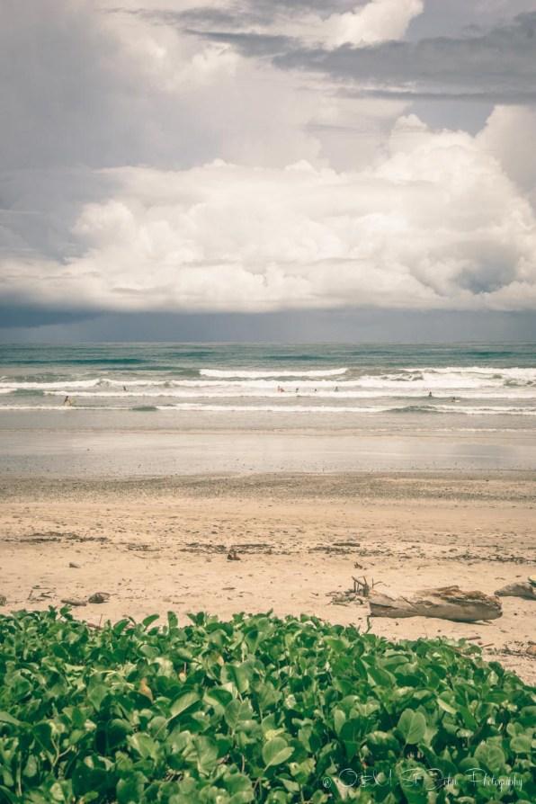 Costa Rica Santa Teresa-7780
