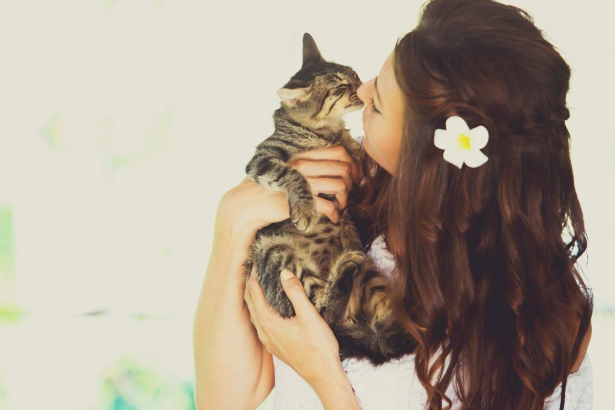 Oksana's favourite cat, our Costa Rican jungle kitty, Mia