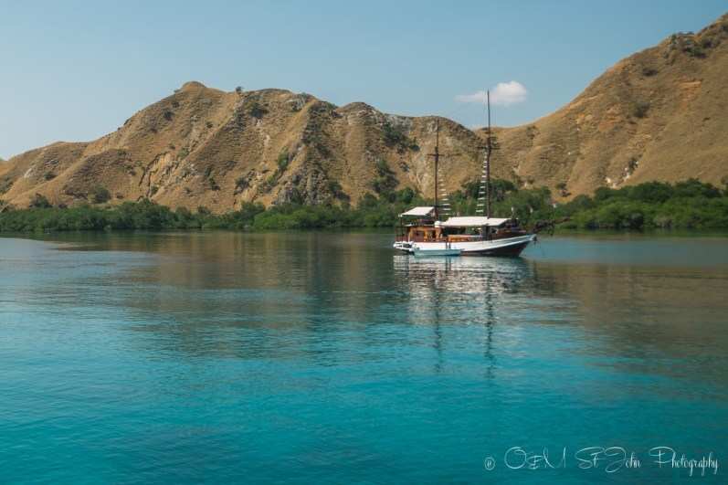 Diving in Komodo National Park