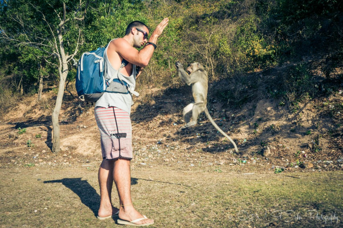 Max making withs with monkeys at Monkey Mountain in Kuta, Lombok