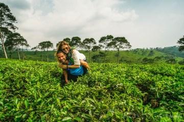 Oksana & Max on a tea plantation in Indonesia