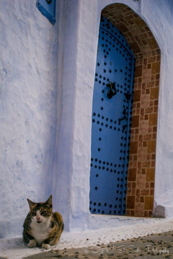 Morocco Chefchaouen-0544