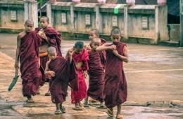 Myanmar Burmese Monk-0881