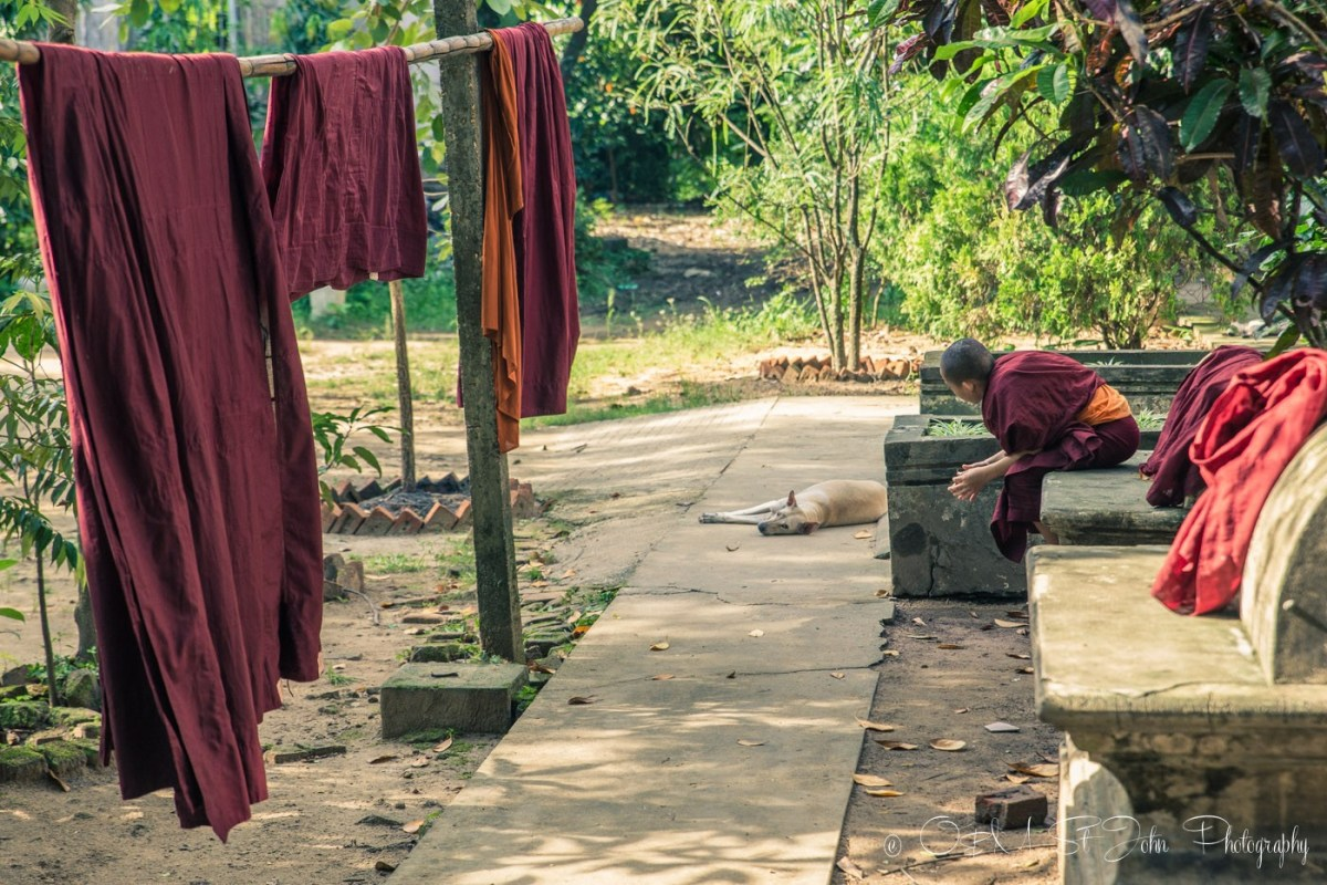 Monk in a monastery in Yangon. Myanmar