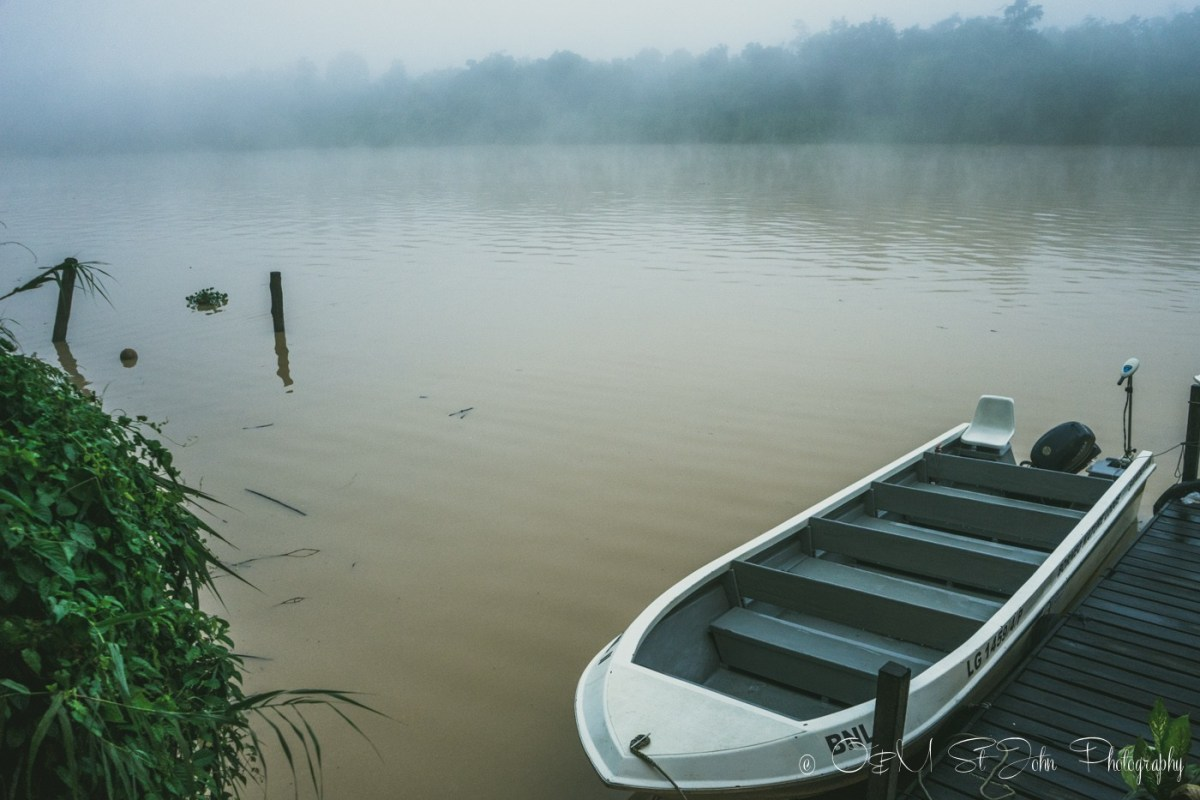 Foggy morning on Kinabatangan River. Sabah. Malaysian Borneo