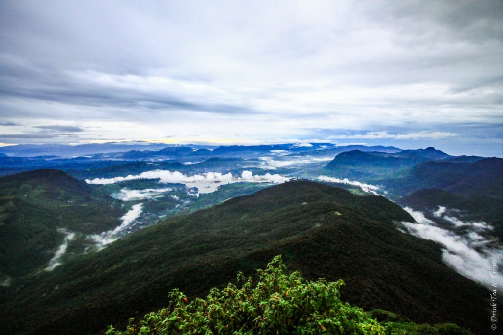 View from Sri Pada (Adam's Peak) just after sunrise. It's a 3-4 hour climb to get up there, but when you are standing at the top of the peak, above the hills and the clouds, every one of those 5,000 steps seems worth it