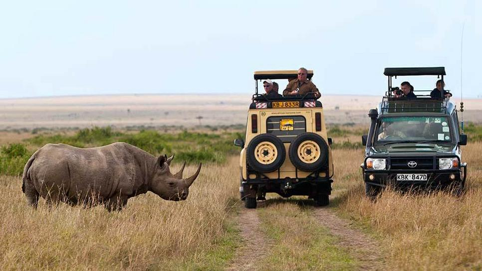 Masai Mara National Park Safari