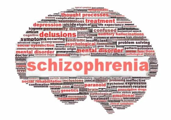 Can Parasites Cause Schizophrenia?