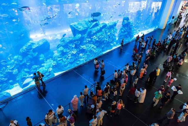 The largest aquarium panel in the world