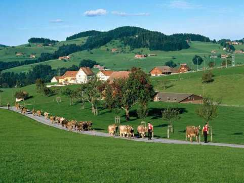 ngoi lang Appenzell