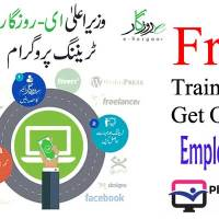 E-Rozgaar: Punjab Gov's Training Program to make money online at home