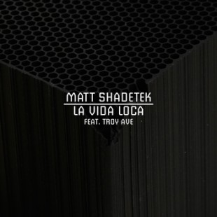 Matt-Shadetek-La-Vida-Loca-ft.-Troy-Ave-310x310