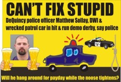 Officer Matthew Sollay busted for DWI wrecked patrol car