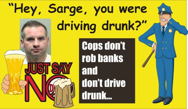 Bloomington Police Sgt DUI 111213