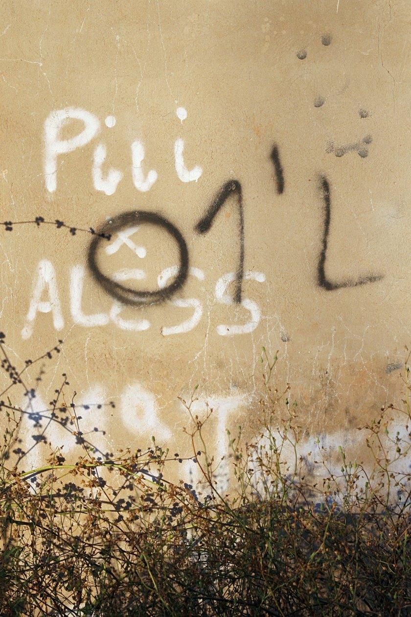Foto: Pablo Ruiz. Montcada, Valencia.