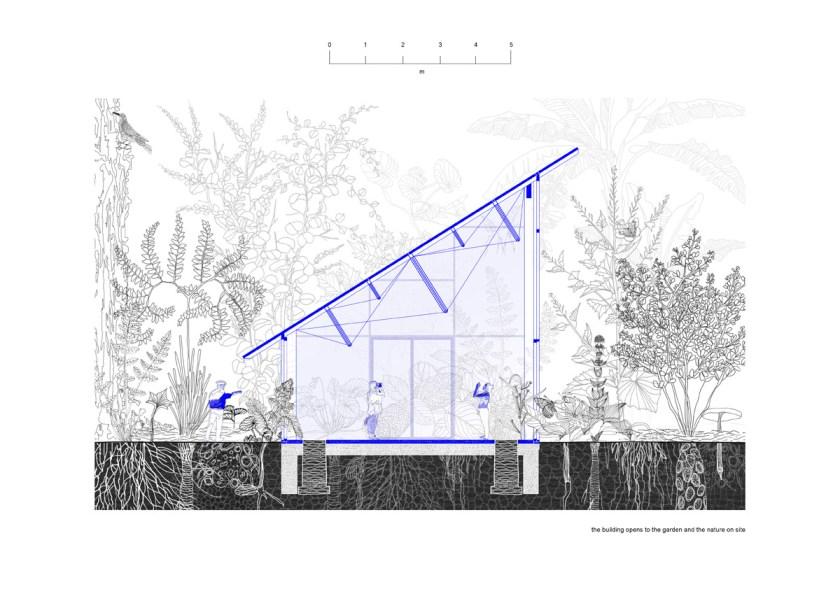 Mendel-greenhouse-drawings-Chybik-Kristof_05