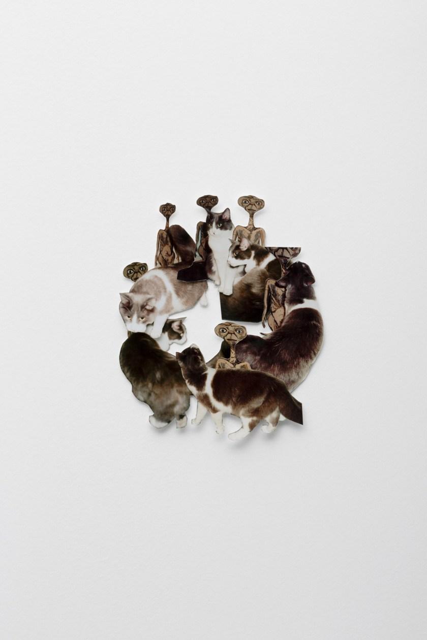 vincent-fecteau-naturaleza-multifacetica-Fridericianum-13
