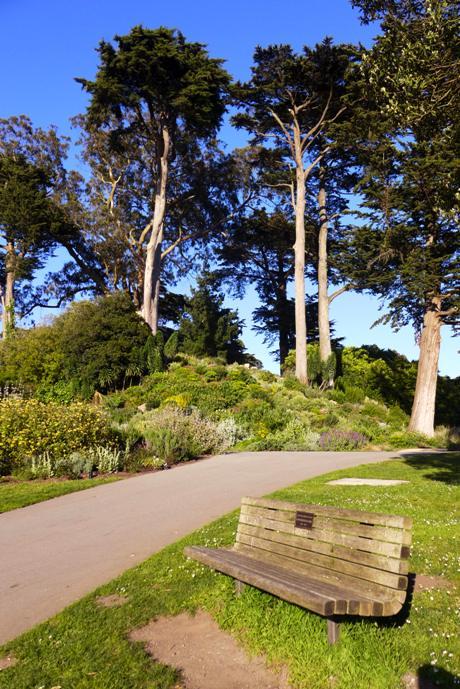 Botanical Garden, Golden Gate Park, San Francisco