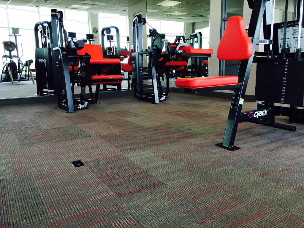 Soulful North Park North Park Apartments Eagle Mat Products Commercial North Point Business Park Fitness North Park Fitness Trail houzz-03 North Park Fitness