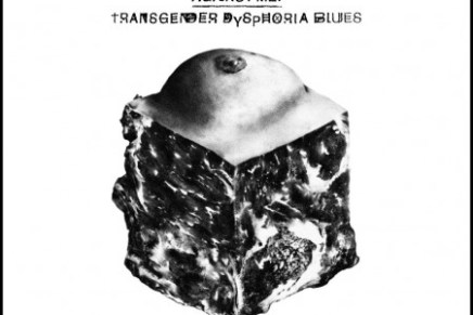 Against Me! – Transgender Dysphoria Blues Review