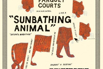 Parquet Courts New Album, Sunbathing Animal