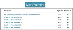 Type-of-work-on-microworkers